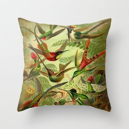 HUMMINGBIRD COLLAGE- Ernst Haeckel Throw Pillow