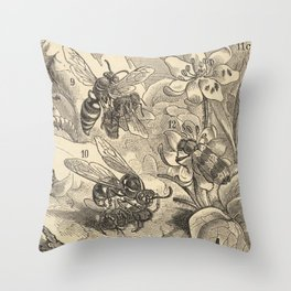 Antique Bee  Enemies Illustration Throw Pillow