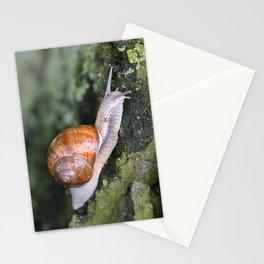 Snail 1 Stationery Cards