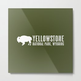 Bison: Yellowstone National Park Metal Print