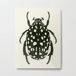 green beetle insect Metal Print