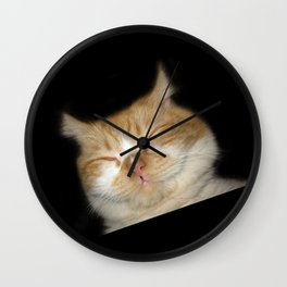 Funny Sleeping Cat Wall Clock