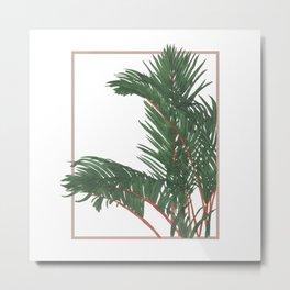 House Plants 2 Metal Print