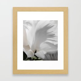 Angel Tulip Framed Art Print