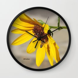 Desert Sunflower Pollen Shop Wall Clock