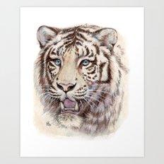 White Tiger 909 Art Print