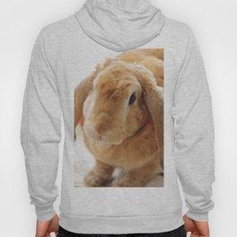 The Velveteen Rabbit Hoody