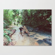 Borneo river rafting Canvas Print