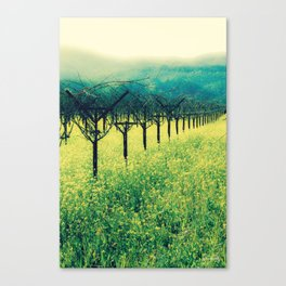 Winter Vineyard I - Serenity Canvas Print