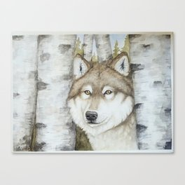 Timber Wolf in Aspen Trees Watercolor Canvas Print