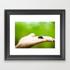 a slug in the hand Framed Art Print