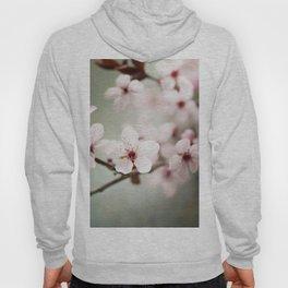 Spring blossom Hoody
