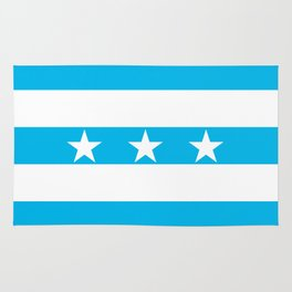 Guayaquil city flag Rug