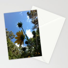 SwampSunflower Stationery Cards