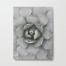 Minimalist Succulent Bloom Metal Print