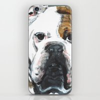 english bulldog iPhone & iPod Skins featuring English Bulldog  by ali_grace_gal
