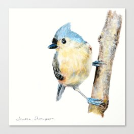 Tufted Titmouse by Teresa Thompson Canvas Print