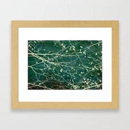 boughs Framed Art Print