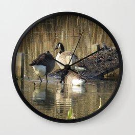 Ducks at John Heinz Wildlife Reguce Wall Clock