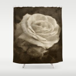 Pink Roses in Anzures 2 Antiqued Shower Curtain