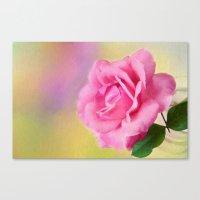 blush Canvas Prints featuring Blush by ThePhotoGuyDarren