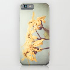 Who are you Slim Case iPhone 6s