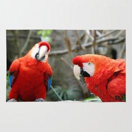 Scarlet Macaws Rug