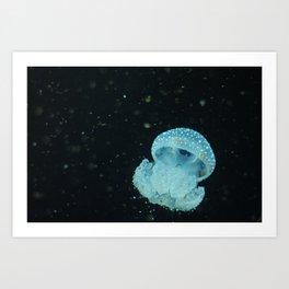 Barcelona Aquarium XI Art Print