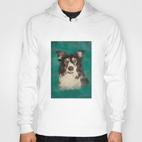 border collie Hoodies featuring Quinn the Welsh border collie by Carl Conway