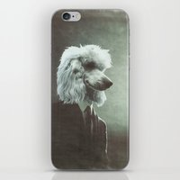 poodle iPhone & iPod Skins featuring Poodle by womoomow