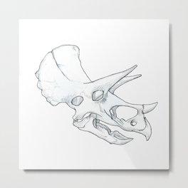 Triceratops horridus Metal Print