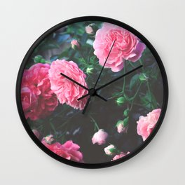 Spring Morning Pink Roses in Bloom Photography Wall Clock