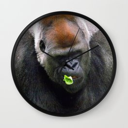 Male Silverback Lowland Gorilla with Smirk and Lettuce in Mouth Wall Clock