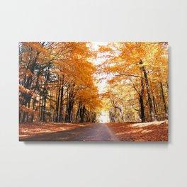 Autumns Revenge Metal Print