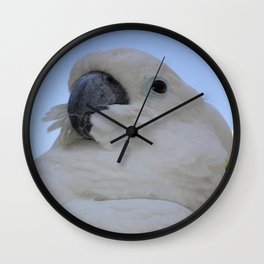 Ruffled Feathers Of A Blue Eyed Cockatoo Wall Clock