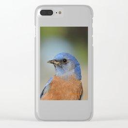 Bluebird in La Verne Clear iPhone Case