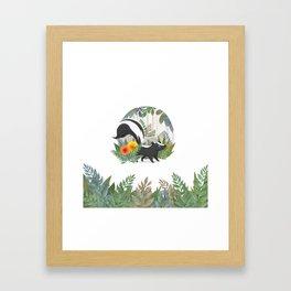 Skunk in the forest Framed Art Print