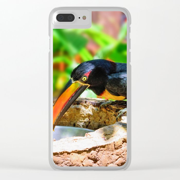 Fiery-billed Toucan Clear iPhone Case