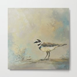 Shore Bird 2945 Metal Print