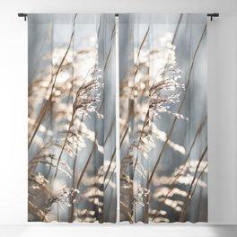 Touch of light - Nature's Beaty - Minimal Pastel Fine Art Blackout Curtain