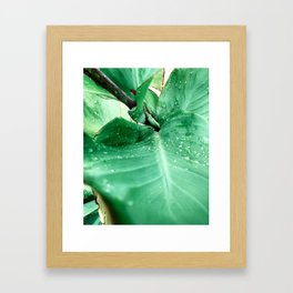 Past the foreground Framed Art Print