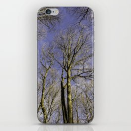 NATURE SINCE 1995 iPhone Skin
