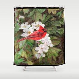 Red Bird on Hawthorn Flowers Shower Curtain