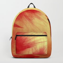 Let's Get Ready To Party! Backpack