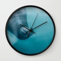 walrus Wall Clocks featuring walrus by adi katz