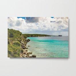 Tropical Coast Metal Print