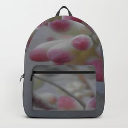 succulent. Backpack
