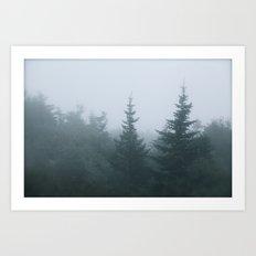 Evergreen Fog Art Print