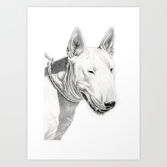 Dogs Bull Terrier Art Print By Rubenpino Society - Bull terrier art