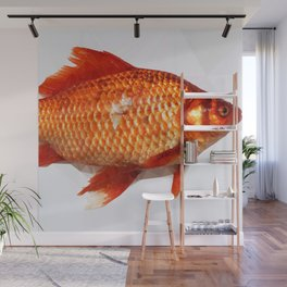 Geometric Goldfish Wall Mural